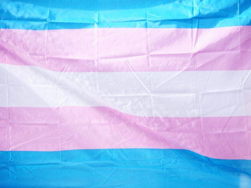 bandera trans*